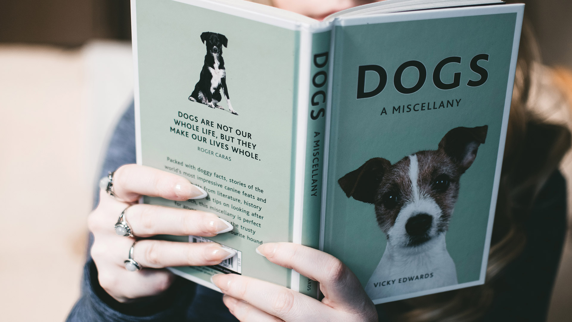 Top 10 Best Service Dog Training Resources | AnythingPawsable