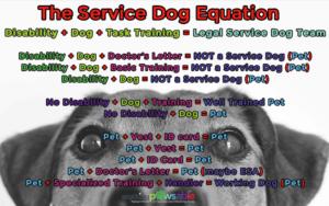 Service Dog Equation Anything Pawsable